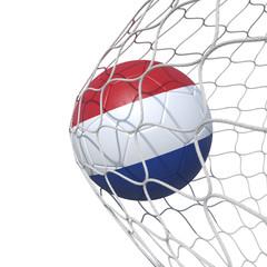 Netherlands Netherlandish Holland flag soccer ball inside the net, in a net.