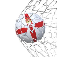 Northern Ireland flag soccer ball inside the net, in a net.