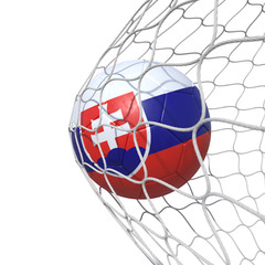 Slovakia Slovakian flag soccer ball inside the net, in a net.