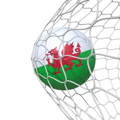 Wales flag soccer ball inside the net, in a net.