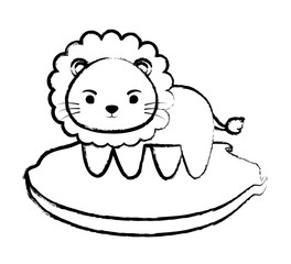 sketch of cute lion on the grass over white background, vector illustration