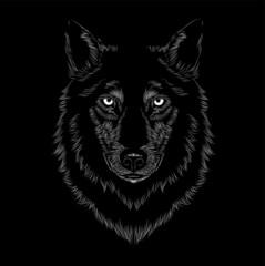 wolf head face vector illustration