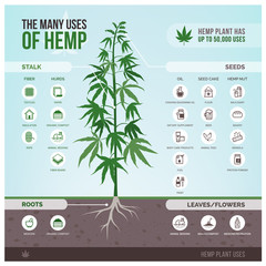 Industrial hemp uses and products