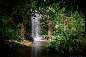 Beautiful waterfall in green jungle oasis