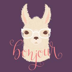 Llama in glasses vector illustration