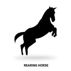 rearing horse silhouette isolated on white background
