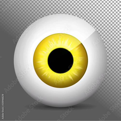 EyeballyellowEye, yellow  Realistic 3d orange eyeball vector