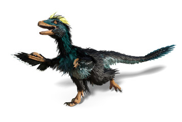 Deinonychus - Dinosaur with Feathers Wall mural