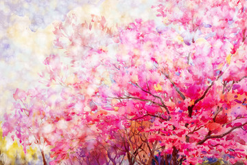 Painting floral composition Sakura or Wild himalayan cherry.