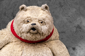 A close portrait of a staffed grumpy teddy bear on a natural background