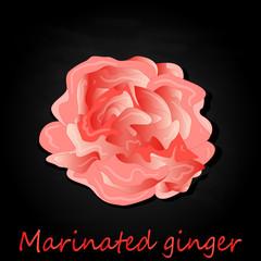 Marinated ginger slices illustration  isolated