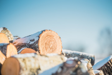 Logs sawn a wood on a background of blue sky. Close up.