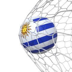 Uruguay Uruguayan flag soccer ball inside the net, in a net.