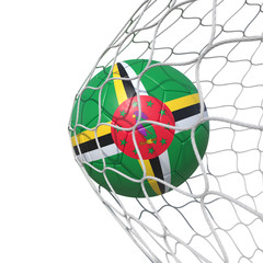 Dominica Dominican flag soccer ball inside the net, in a net.