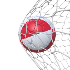 Greenland flag soccer ball inside the net, in a net.