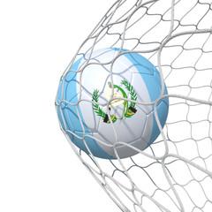 Guatemala Guatemalan flag soccer ball inside the net, in a net.