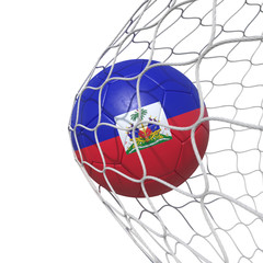 Haiti Haitian flag soccer ball inside the net, in a net.