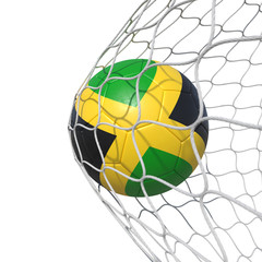 Jamaica Jamaican flag soccer ball inside the net, in a net.