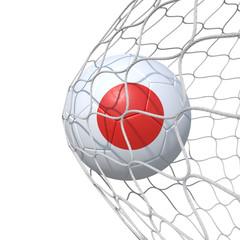 Japan Japanese flag soccer ball inside the net, in a net.
