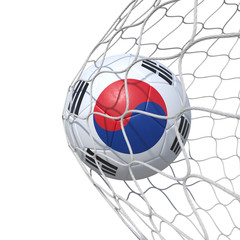 South Korea South Korean flag soccer ball inside the net, in a net.