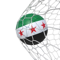 Syrian Syria New flag soccer ball inside the net, in a net.