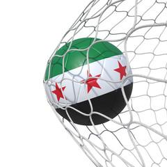 Syrian Syria New flag soccer ball inside the net, in a net.