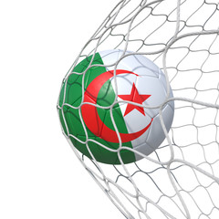 Algerian Algeria flag soccer ball inside the net, in a net.