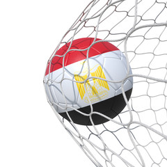 Egypt Egyptian flag soccer ball inside the net, in a net.