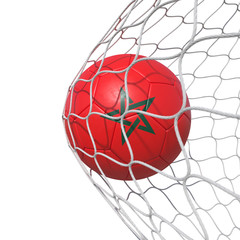 Morocco Moroccan flag soccer ball inside the net, in a net.