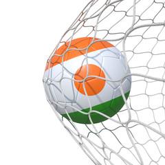 Niger Nigerian flag soccer ball inside the net, in a net.