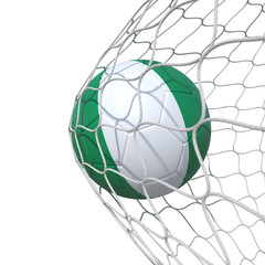 Nigeria Nigerian flag soccer ball inside the net, in a net.