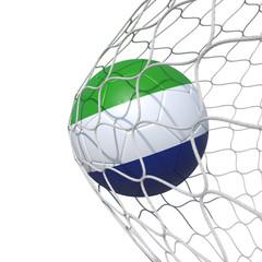 Sierra Leone flag soccer ball inside the net, in a net.