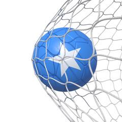 Somalia Somali flag soccer ball inside the net, in a net.