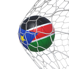 South Sudan flag soccer ball inside the net, in a net.