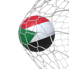 Sudan Sudanese flag soccer ball inside the net, in a net.