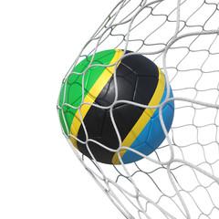 Tanzanian Tanzania flag soccer ball inside the net, in a net.