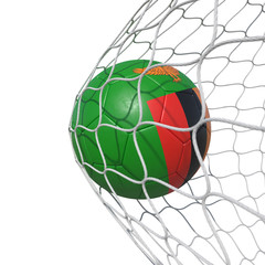 Zambia Zambian flag soccer ball inside the net, in a net.