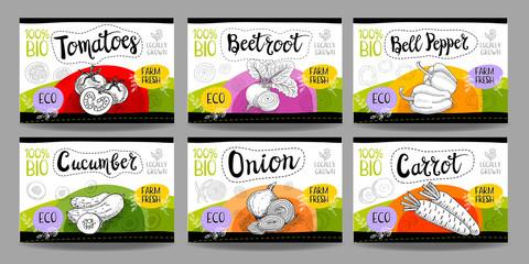 Set of hand drawn food labels, spices labels, fruit labels, vegetable labels