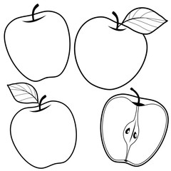 Apples. Black and white coloring book page