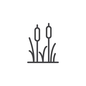 Reeds plant outline icon. linear style sign for mobile concept and web design. Cattail simple line vector icon. Symbol, logo illustration. Pixel perfect vector graphics