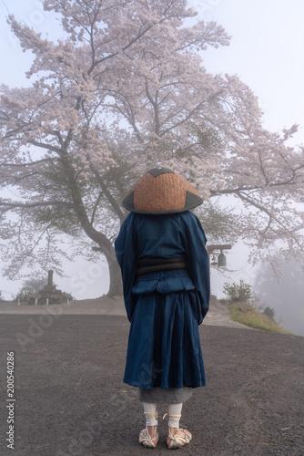 """雲水と桜10""""Fotolia.com の スト..."""