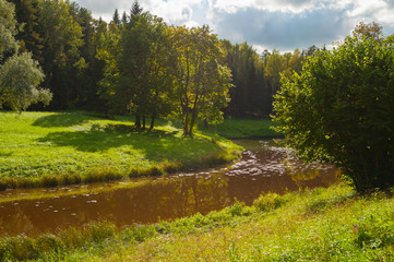 Spring sunny landscape. Spring trees at the bank of the forest river in sunny day