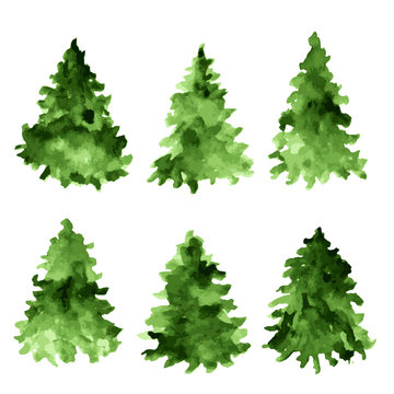 Set of green watercolor spruces. Fir tree collection.