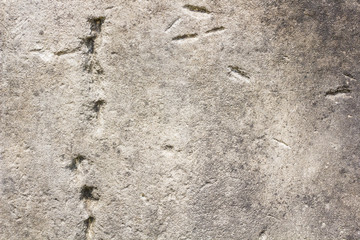 Closeup texture of old stone wall