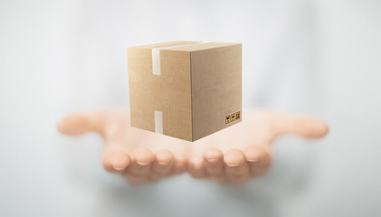 Mani con scatola o pacco, spedizioni