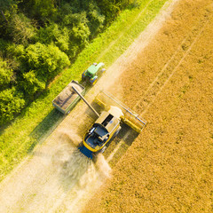 Aerial view of summer harvest. Combine harvester and tractor harvesting field. Agriculture from drone view.