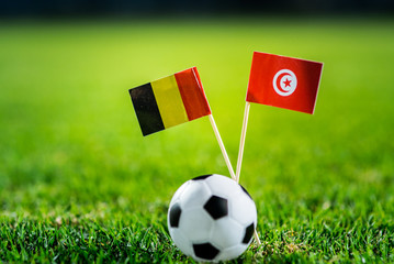 National Flags on green grass with football ball.