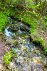 "Forest stream ""Gremuchiy ruchey"" - Natural landmark in Zhukovsky district, Kaluzhskoy region, Russia"