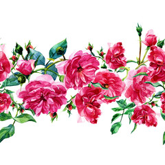 Seamless pattern of large roses painted in watercolor.