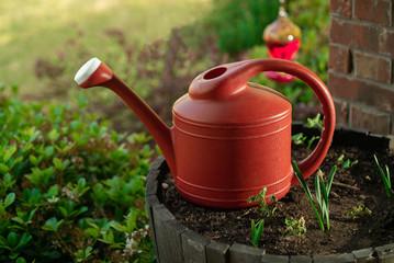 Water Can In Garden Pot